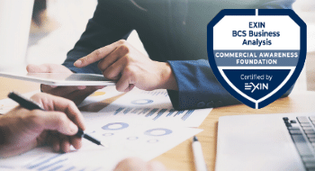 BCS Commercial Awareness Foundation